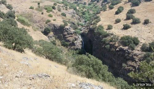 נחל יהודיה רמת הגולן