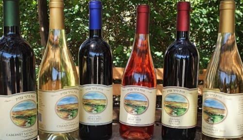 יינות מובחרים, צילום: טל גליק